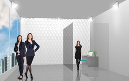 Business consultants. Beautiful businesswoman consultants standing at the office Royalty Free Stock Photos