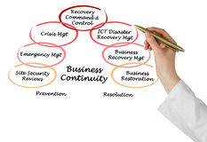 Business Continuity. Presenting diagram of Business Continuity stock image