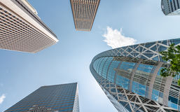 Business and corporate concept. Modern office buildings, skyward Stock Images