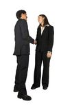 Business coupe handshake Royalty Free Stock Photography