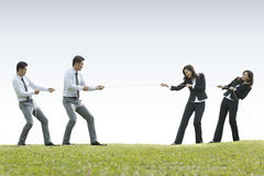 Business couple playing tug of war Royalty Free Stock Photography