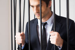 Business criminal. Stock Photography