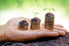 Business with csr Stock Photography