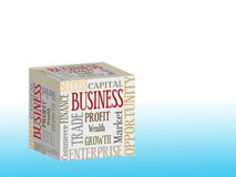 Business cube Royalty Free Stock Images