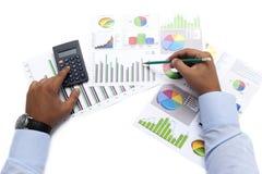 Business Data Analyzing Stock Image