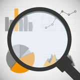 Business data elements with magnifying glass. Infographics statistics, charts and graphs Stock Photo