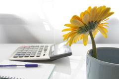 Business desk. Yellow gerbera in vase on the business desk Royalty Free Stock Photo