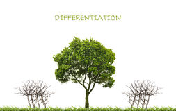 Business, differentiation concept Stock Photos