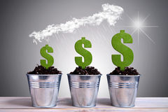 Business dollar growth. Different phases of dollar plant growth with rain falling from an arrow made of clouds hovering above Stock Photography