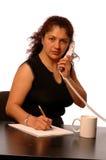 Business executive royalty free stock photos