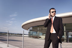 Business executive talking on cell phone. Stock Photos