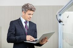 Business Executive Using Laptop Royalty Free Stock Images