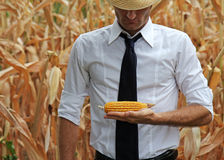 Business and farmer checking his products Royalty Free Stock Image