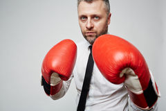 Business fight Stock Photos