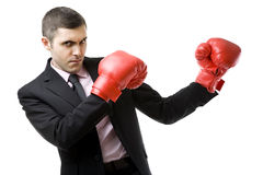 Business fighter Royalty Free Stock Photos