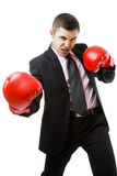 Business fighter Royalty Free Stock Photo