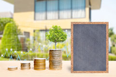 Business finance and real estate concepts. Business finance and real estate concepts, Money coin stack with trees growing on coin, Chalkboard free space for you Royalty Free Stock Images