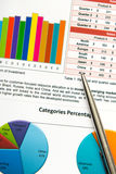 Business financial sheet. Showing annual performance Stock Photos