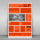 Business flyer. Business flyer design, poster template. Vector mock up Royalty Free Stock Photos