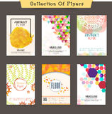 Business Flyer or Pamphlet collection. Royalty Free Stock Photos
