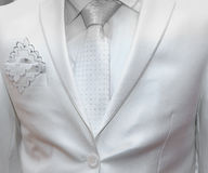 Business formal wear with tie and suit Stock Photos
