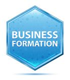 Business Formation crystal blue hexagon button stock illustration