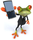 Business frog Stock Photos