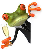 Business frog and champagne Royalty Free Stock Photo