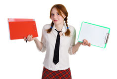 Business girl with a folder and a worksheet. Isolated on white background Royalty Free Stock Photos