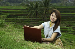 Business girl in the rice field landscape. Royalty Free Stock Photo