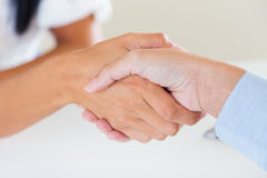 Business girls greeting by handshaking. Stock Photography