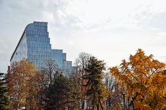 Business glass  building with autumn trees Stock Photography