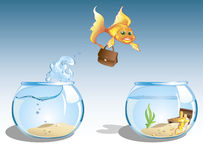 Business goldfish. Cute cartoon goldfish with case jumping to other bowl with chest full of money Stock Photo