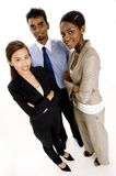 Business Growth. A wide-angle shot of a young diverse business team Stock Image