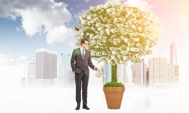 Business growth concept Royalty Free Stock Photography