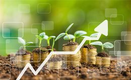 Business growth. Green money investment prosperity concept gold stock photo
