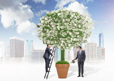 Business growth two businessman Stock Image