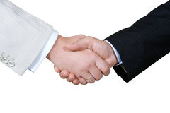 Business Hand. Shaking on a white background royalty free stock photo