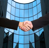 Business handshake. Conceptual image: Man and woman are shaking hands after a business deal Royalty Free Stock Photo