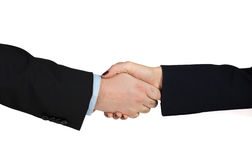 Business handshake. Man and woman are shaking hands Stock Image