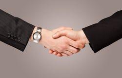 Business handshake Royalty Free Stock Photos