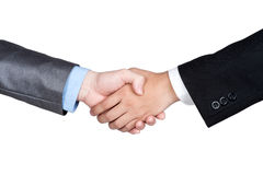 Business handshake isolated Royalty Free Stock Image