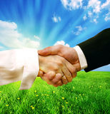 Business handshake on nature background Royalty Free Stock Photo