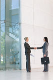 Business handshakes. Business women shaking hands in agreement stock photography