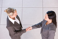Business handshakes. Business women shaking hands in the workplace royalty free stock photos