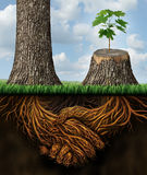 Business Help. And support concept as a tall tree next to a sick stump with a new growth of hope emerging in cooperation and teamwork with the roots shaped as a Stock Images