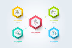 Business hierarchy organogram chart infographics. Corporate  Stock Image