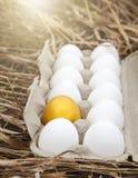 Gold egg with white egg. Business idea, golden egg in white dozen egg Royalty Free Stock Images