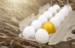 Gold egg with white egg. Business idea, golden egg in white dozen egg Royalty Free Stock Photography