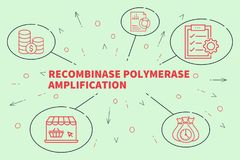 Business illustration showing the concept of recombinase polymer. Ase amplification Royalty Free Stock Photography